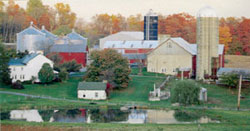 Chester County Farm